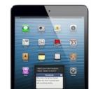iPad Mini 2, caratteristiche